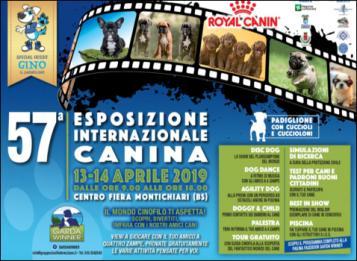 Esposizione Internazionale Canina 2019