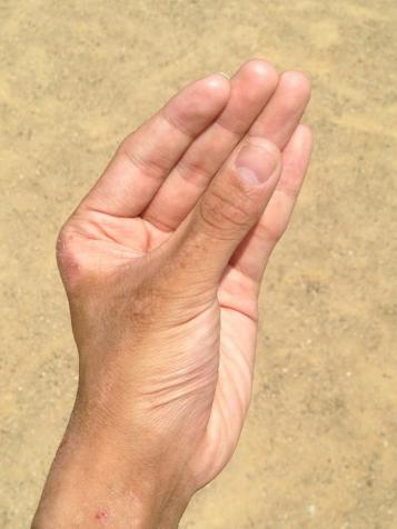 La riscoperta della mano sinistra
