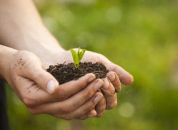 Insediamento Consulta Provinciale per l'ambiente