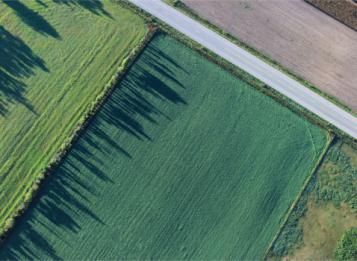 Consumo di suolo: Integrazione del PTR ai sensi della L.R. 31/2014