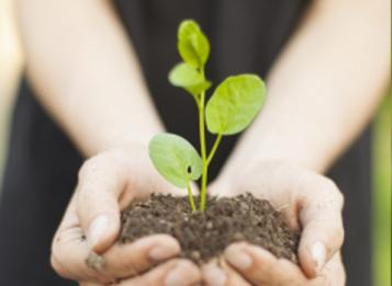 Bando: Infrastrutture verdi a rilevanza ecologica