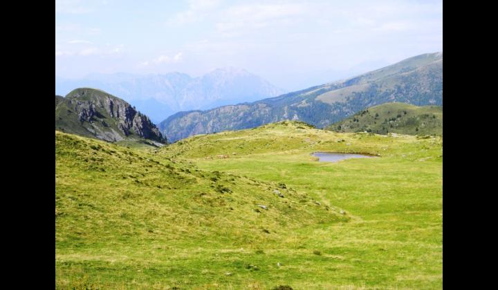 Area Vasta Valgrigna