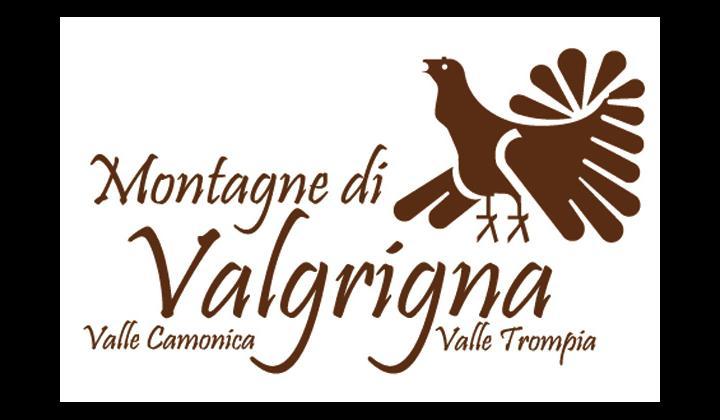 Logo Valgrigna