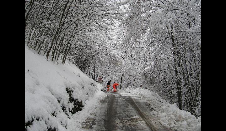 SP 6 - Km 5 - Località Fresine Cevo - 11