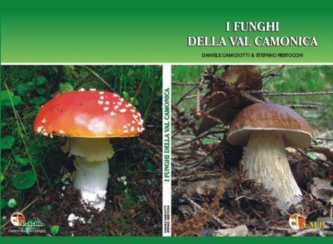 I Funghi della Val Camonica
