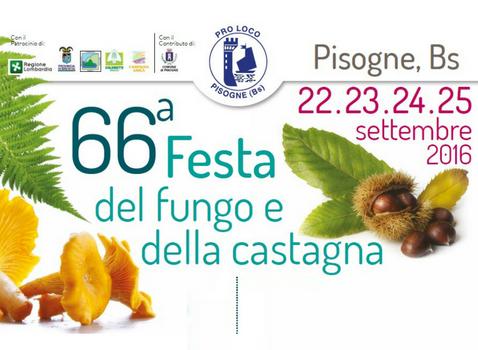 Festa del Fungo e della Castagna