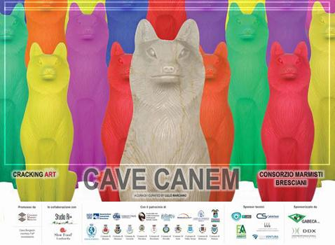 Cave Canem Cracking Art