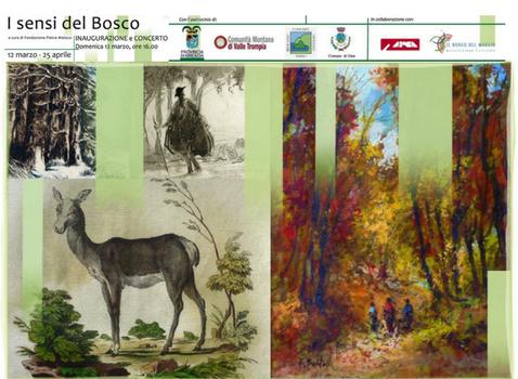 I Sensi del Bosco