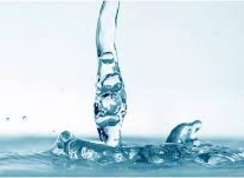 Il Referendum sull'acqua pubblica si farà
