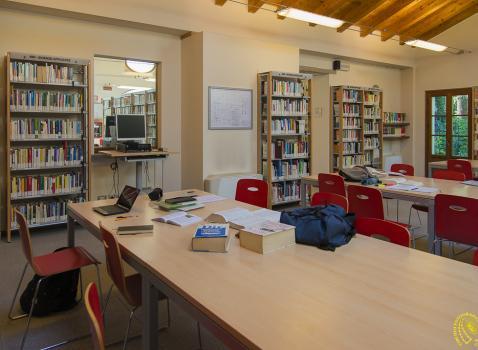 Le biblioteche della Rete Bibliotecaria Bresciana e Cremonese oltre il lock-down