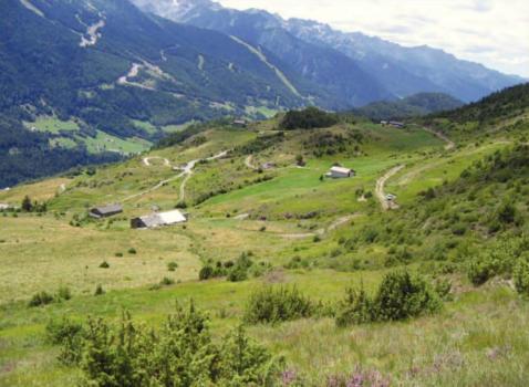 Avviso di approvazione definitiva del Piano di Gestione del Sito di Importanza Comunitaria IT2040024 da Monte Belvedere a Vallorda