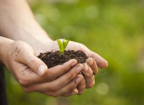 Bandi PSR per imprese agricole ed Enti Gestori di aree Natura 2000