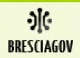 BresciaGov